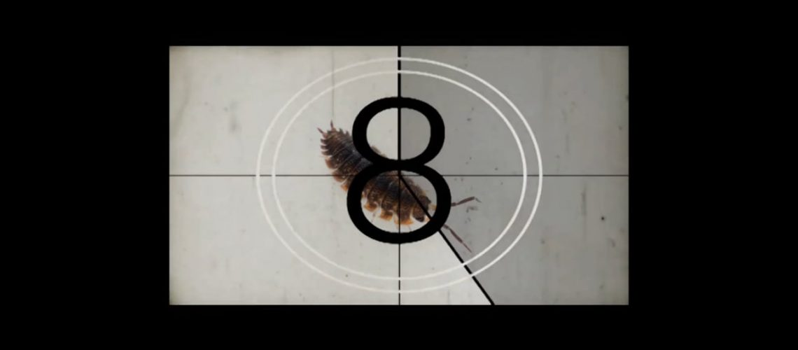 Counting   Photography Portfolio
